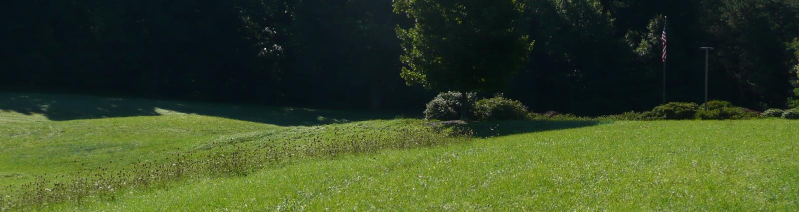 field-next-to-flpc-driveway-crop